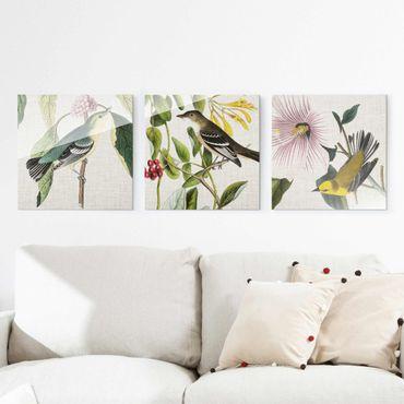 Glasbild mehrteilig - Vögel auf Leinen Set I - 3-teilig