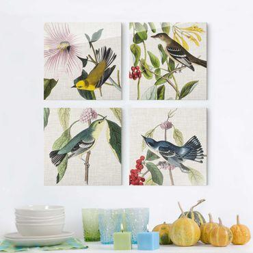 Glasbild mehrteilig - Vögel auf Leinen Set II - 4-teilig