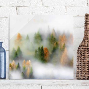 Glasbild - Nebelwald im Herbst - Quadrat 1:1