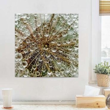 Glasbild - Pusteblume im Herbst - Quadrat 1:1