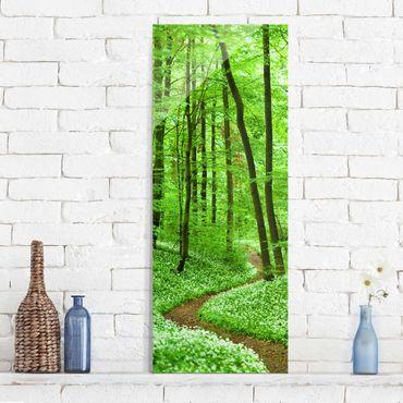 Glasbild - Romantischer Waldweg - Panorama Hoch