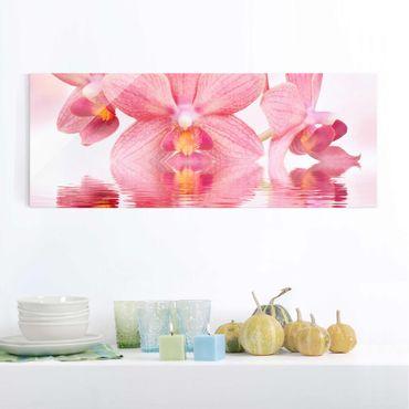 Glasbild - Rosa Orchideen auf Wasser - Panorama Quer