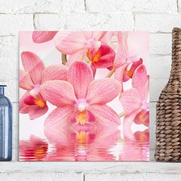 Glasbild - Rosa Orchideen auf Wasser - Quadrat 1:1