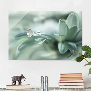 Glasbild - Schmetterling und Tautropfen in Pastellgrün - Querformat 2:3