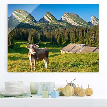 Glasbild - Schweizer Almwiese mit Kuh - Quer 4:3