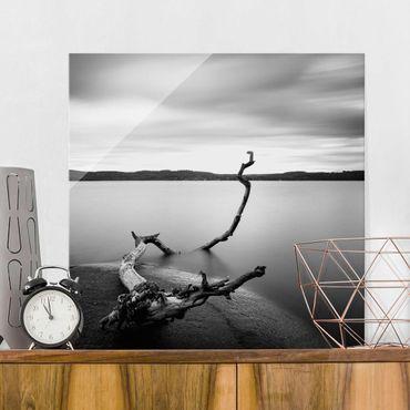 Glasbild - Sonnenuntergang am See schwarz-weiß - Quadrat 1:1