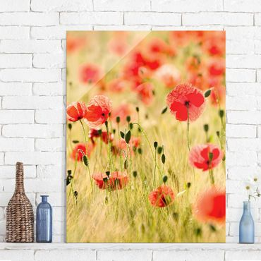 Glasbild - Summer Poppies - Hoch 3:4