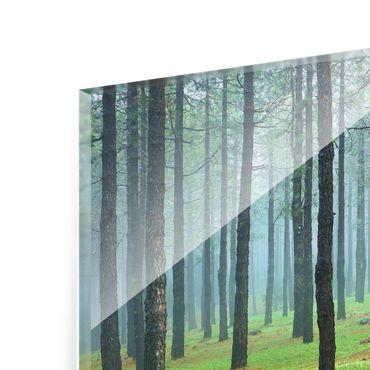 Glasbild - Tiefer Wald mit Kiefern auf La Palma - Quadrat 1:1 - Waldbild Glas