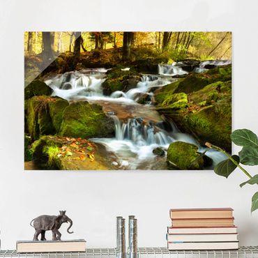 Glasbild - Wasserfall herbstlicher Wald - Quer 3:2