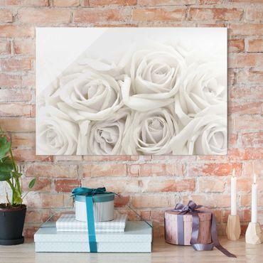 Glasbild - Wedding Roses - Quer 3:2 - Blumenbild Glas