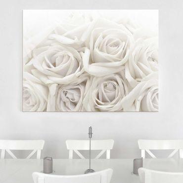 Glasbild weiße Rosen - Wedding Roses - Blumenbild Glas Quer 4:3
