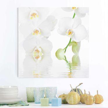 Glasbild - Wellness Orchidee - Quadrat 1:1