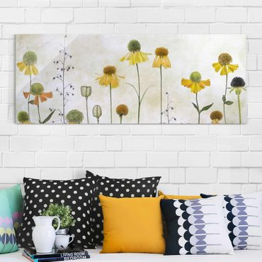 Glasbild - Zarte Helenium Blüten - Panorama