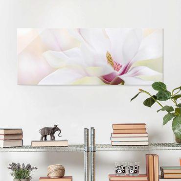 Glasbild - Zarte Magnolienblüte - Panorama