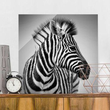 Glasbild - Zebra Baby Portrait II - Quadrat 1:1