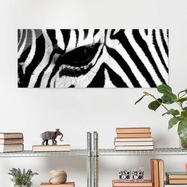 Glasbild - Zebra Crossing - Panorama Quer