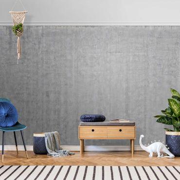Metallic Tapete  - Große Wand mit Betonlook