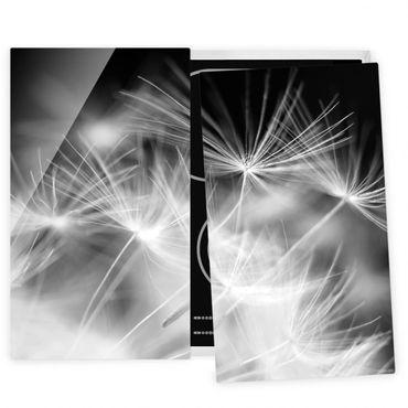Herdabdeckplatte Glas - Bewegte Pusteblumen Nahaufnahme auf schwarzem Hintergrund