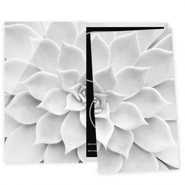Herdabdeckplatte Glas - Kaktus Sukkulente