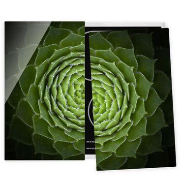 Herdabdeckplatte Glas - Mandala Sukkulente - 52x60cm