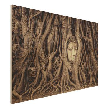 Holzbild - Buddha in Ayutthaya von Baumwurzeln gesäumt in Braun - Quer 3:2