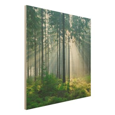 Holz Wandbild - Enlightened Forest - Quadrat 1:1