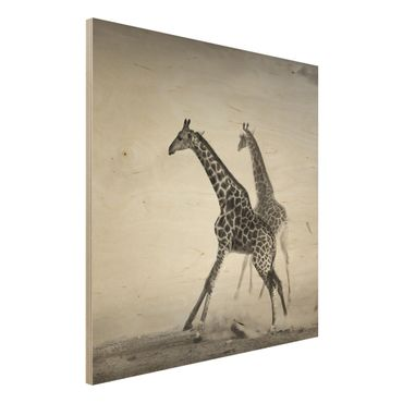 Wandbild aus Holz - Giraffenjagd - Quadrat 1:1