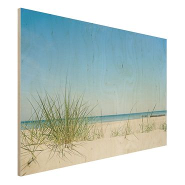 Holzbild Meer - Ostseeküste - Quer 3:2