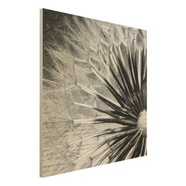 Holzbild Pusteblume Schwarz & Weiß - Quadrat 1:1