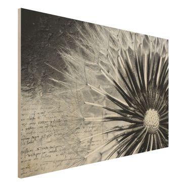 Holzbild Pusteblume Schwarz & Weiß - Quer 3:2