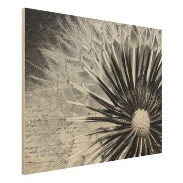 Holzbild Pusteblume Schwarz & Weiß - Quer 4:3