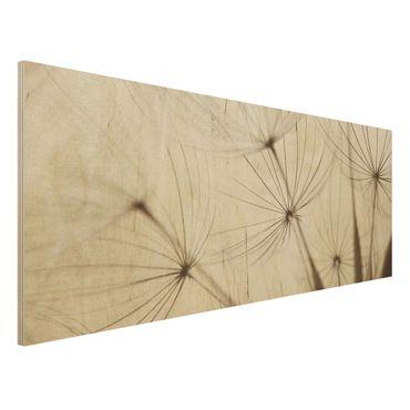 Holz Wandbild - Sanfte Gräser - Panorama Quer