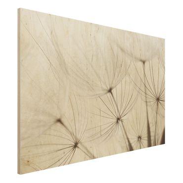 Holz Wandbild - Sanfte Gräser - Quer 3:2