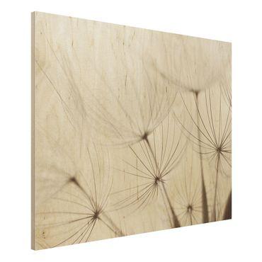 Holz Wandbild - Sanfte Gräser - Quer 4:3