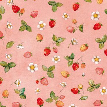 Klebefolie - Erdbeerinchen Erdbeerfee - Erdbeerblüten