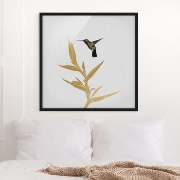 Bild mit Rahmen - Kolibri und tropische goldene Blüte II - Quadrat