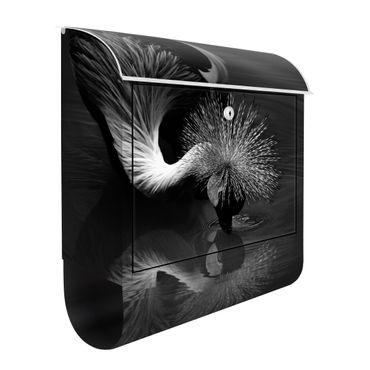 Briefkasten - Kronenkranich Verbeugung Schwarz Weiß