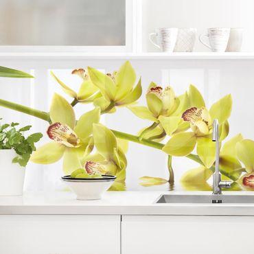 Küchenrückwand - Elegant Orchid Waters