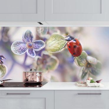 Küchenrückwand - Marienkäfer im Garten