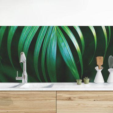 Küchenrückwand - Palmenwedel