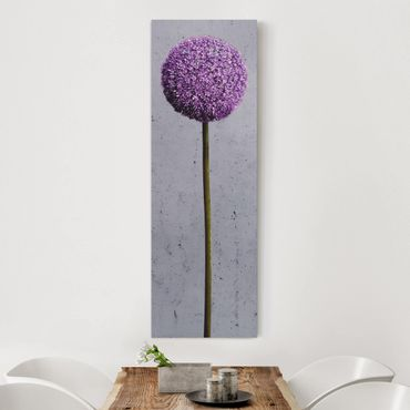 Leinwandbild - Allium Kugel-Blüten - Panorama Hoch