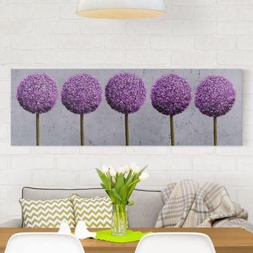 Leinwandbild Allium Kugel-Blüten - Panoramabild Quer, Lila, Grau
