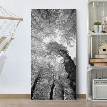 Leinwandbild Schwarz-Weiß - Bäume des Lebens II - Hoch 1:2