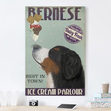 Leinwandbild - Berner Sennenhund mit Eis - Hochformat 3:2