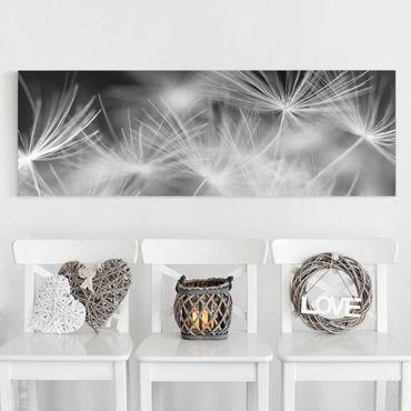 Leinwandbild Schwarz-Weiß - Bewegte Pusteblumen Nahaufnahme auf schwarzem Hintergrund - Quer 3:2