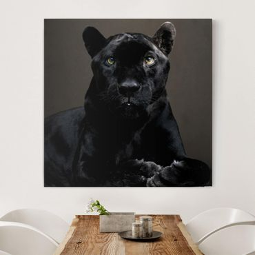 Leinwandbild - Black Puma - Quadrat 1:1