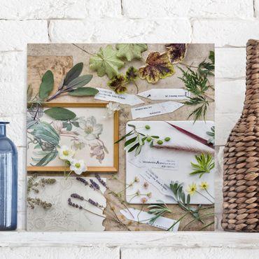 Leinwandbild - Blumen und Gartenkräuter Vintage - Quadrat 1:1