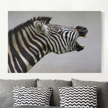 Leinwandbild Schwarz-Weiß - Brüllendes Zebra - Quer 3:2