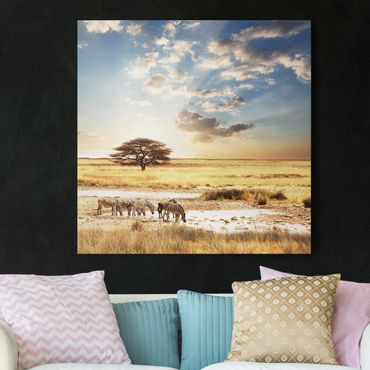Afrika Leinwandbild Das Leben der Zebras - Blau, Gelb, Quadrat 1:1