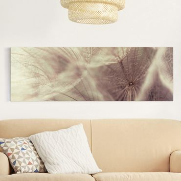 Leinwandbild - Detailreiche Pusteblumen Makroaufnahme mit Vintage Blur Effekt - Panorama Quer